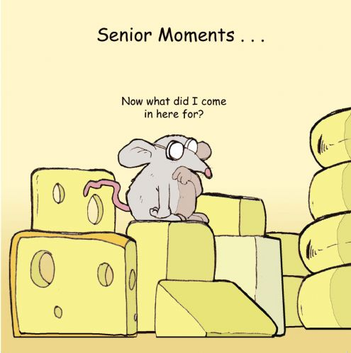 TW354 – Senior Moments Funny Card